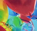 Pinksterconcours 30 jaar